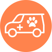 Our Services - Kettering Vets