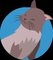 Pet Health Plans - Kettering Vets